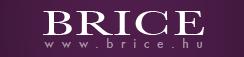Brice Management